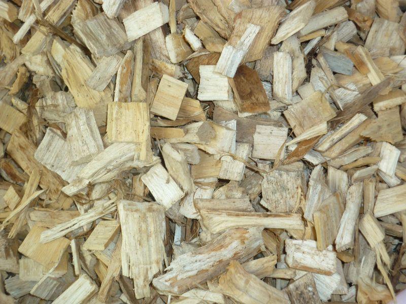 paillage composé exclusivement de bois blanc type peuplier ou saule ~ Bois De Peuplier